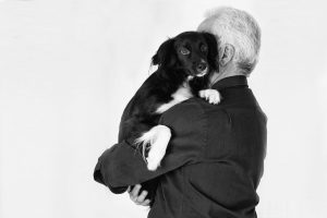 Dog-seniorman pet-1162072_1920