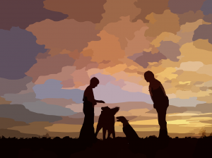 dogs-sunset-295137_1280