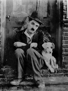 Dog-charlie-chaplin-510160_1920