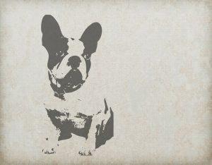 dog-220302_1280