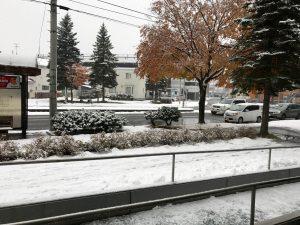 帯広市内の雪景色